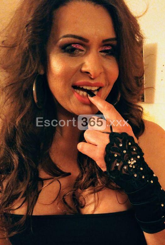 Elektra, Trans Faenza