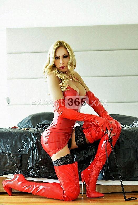 Gisela Top Trans, Trans Firenze